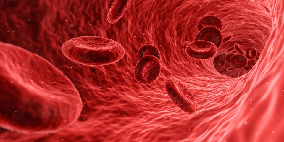 Що таке пуповинна кров?